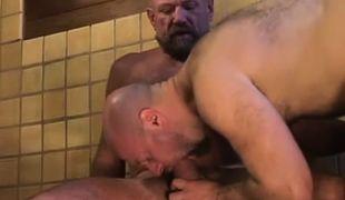 Bear dilf swallows hard dick of mature gay