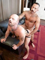 Alessio Romero - Rogue Status - in Gay Porn Photos